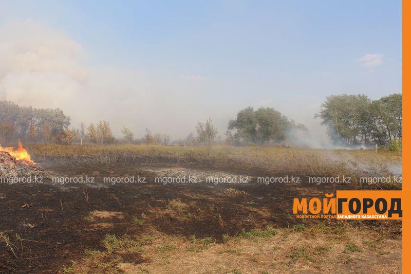 Сильный пожар уничтожает дома вблизи Уральска dachi (9)