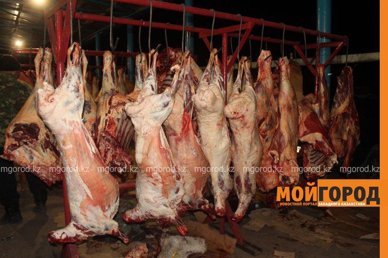На неподтверждение положительной реакции на бруцеллез уже после забоя скота пожаловались сельские предприниматели в ЗКО