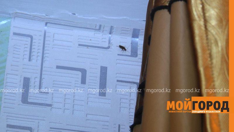 Жильцы разрушают общежитие, чтобы получить новые квартиры в Уральске 2204 Громова 2-1.неподвижное изображение008 [800x600]