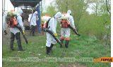 Опрос: Довольны ли вы борьбой с комарами в Уральске?