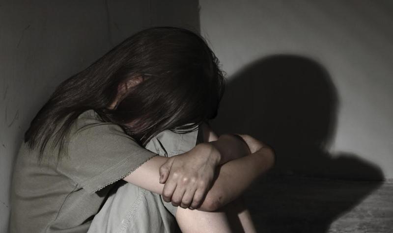 Подозреваемый в развращении 11-летней падчерицы взят под стражу в ЗКО В ЗКО педофил полгода насиловал 6-летнюю девочку