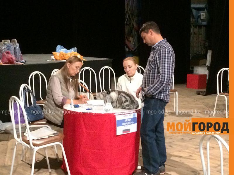 Новости Уральск - Бурманских кошек впервые привезли на выставку в Уральск koshki (18)