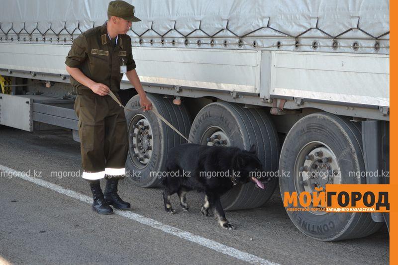 Под матрасами и одеялами в багажнике авто пытались вывезти казахстанца в Россию