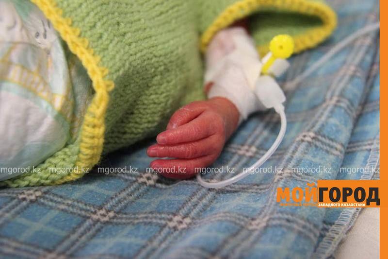 Новости Атырау - В Атырау недоношенных малышей одели в теплые подарки 14991819_724094741102359_2636031159273188469_n [800x600]