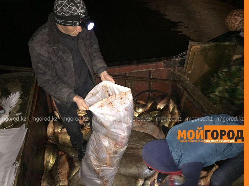 Пограничники задержали браконьеров с занесёнными в красную книгу рыбами