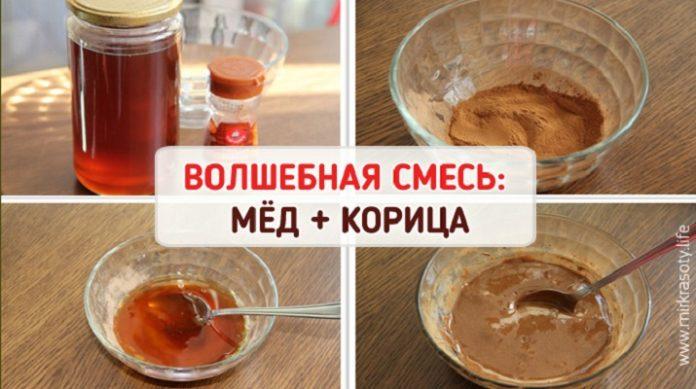 med-korica-696x389