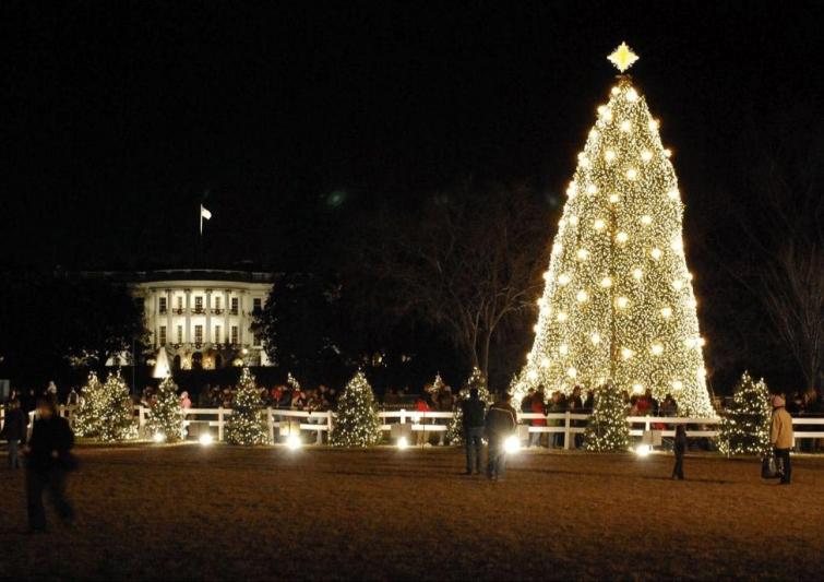 Национальная рождественская елка за пределами Белого дома, Вашингтон, США