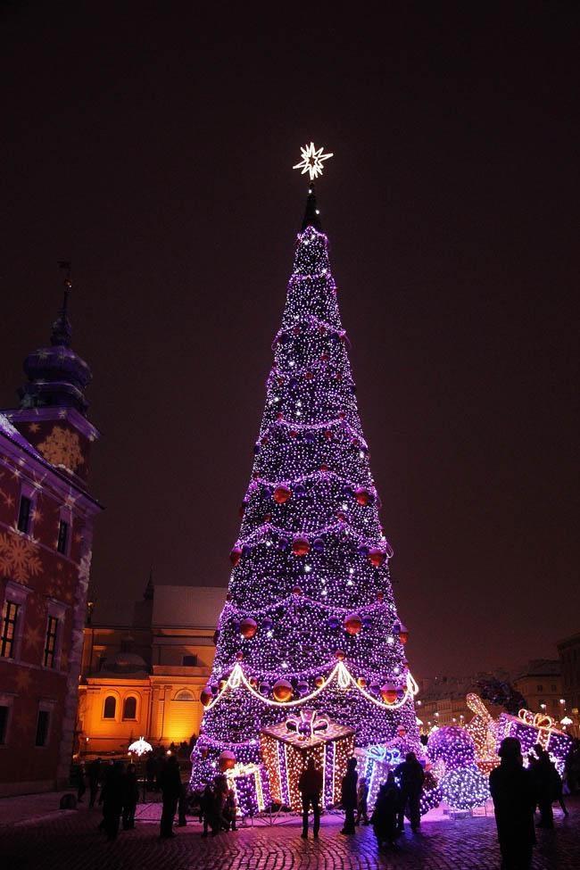 Лиловая ёлка в Варшаве, Польша
