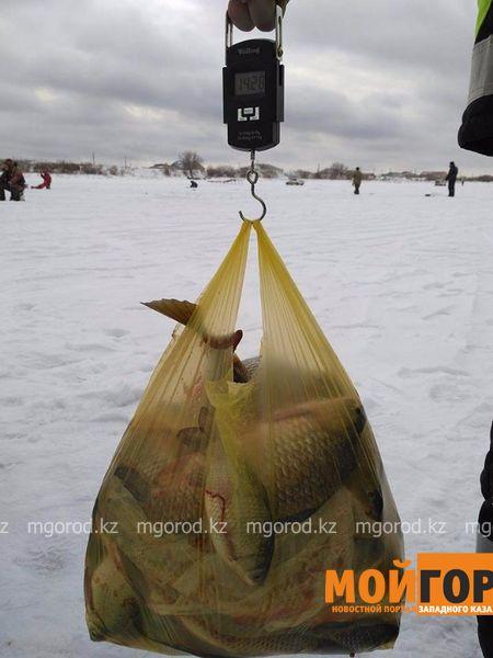 Новости Атырау - В Атырау после благотворительной рыбалки весь улов раздали пенсионерам 80d3c828-9020-4fa5-abeb-1826ec25454b [800x600]