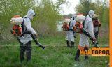 В Уральске продолжается борьба с комарами