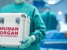 organ-donation-transplantation-33fu220jp8q0qhqa3zlv5s