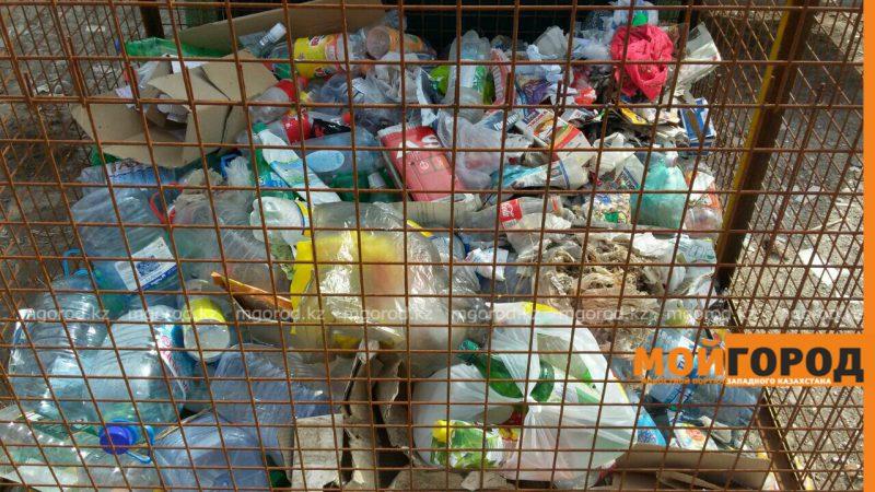 Новости Атырау - Жители Атырау захламили контейнеры для сбора пластика бытовым мусором PicsArt_04-18-12.17.16
