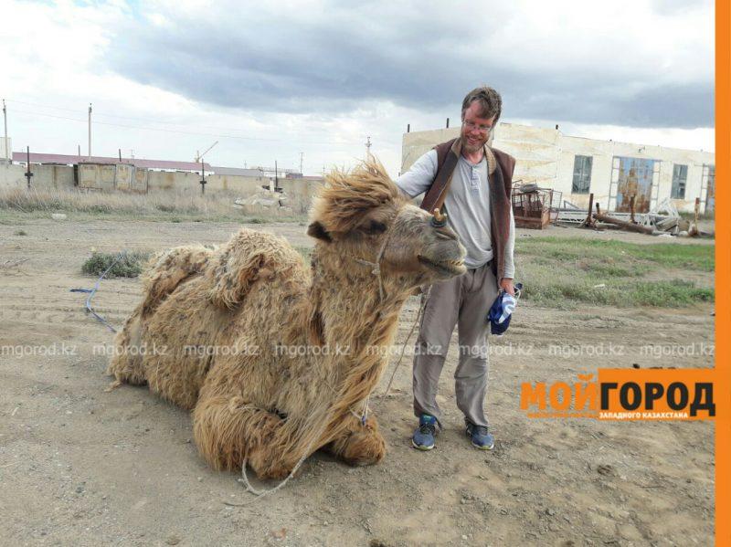 Новости Атырау - Путешественник из Швеции идет пешком через весь Казахстан с верблюдом 842a73c0-97ef-4bd6-914f-457624a99eb8
