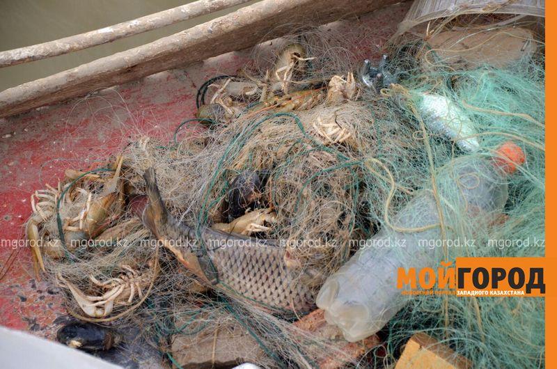 Новости Атырау - Более 50 тонн мусора собрали с берегов Урала в Атырау 8e631df5-75fe-4e18-9a16-eed1b76895d9-800x600