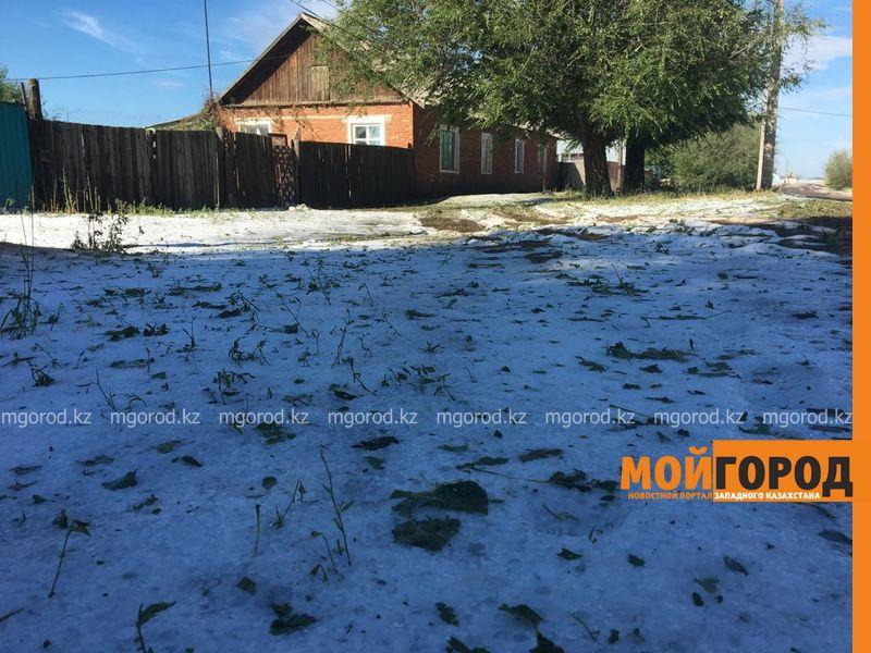 Сильнейший град в ЗКО: земля до сих пор покрыта льдом (фото) grad (2)