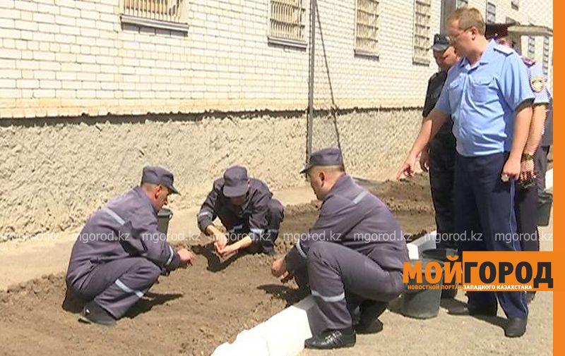 Заключенные колонии строгого режима в Уральске выращивают укроп и петрушку ru 170-3 (1)