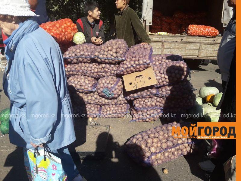 Новости Уральск - Уральцы просят на сельхозярмарках продавать мясо