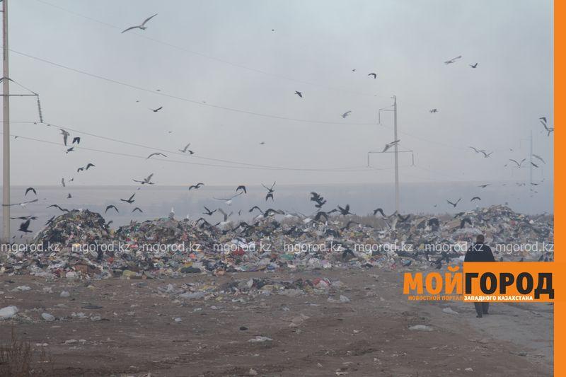 Новости Уральск - Жители Уральска задыхаются от дыма горящего полигона ТБО
