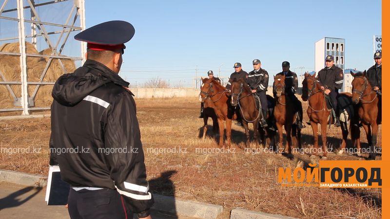 Новости Уральск - Дачные массивы Уральска будет патрулировать конный взвод