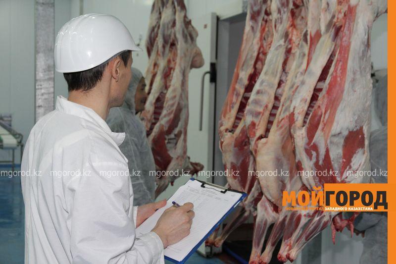 Новости Уральск - 76 компаний вошли в мясной территориальный кластер ЗКО
