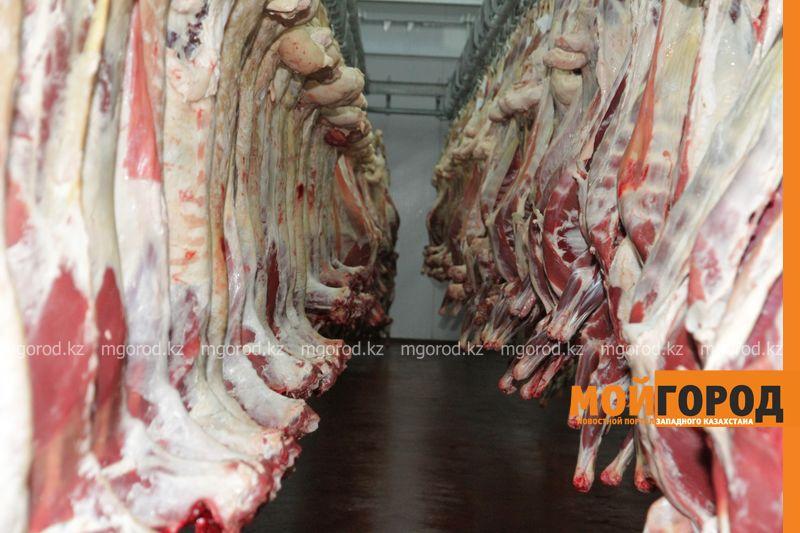 Новости Уральск - Китай заинтересован в экспорте мяса из ЗКО