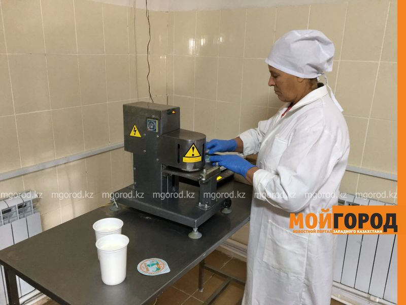 Новости Уральск - В районе ЗКО открыли цех по переработке молока