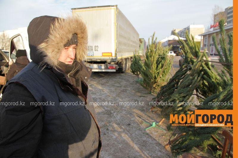 Новости Уральск - Продавцы елок в Уральске жалуются на плохую торговлю