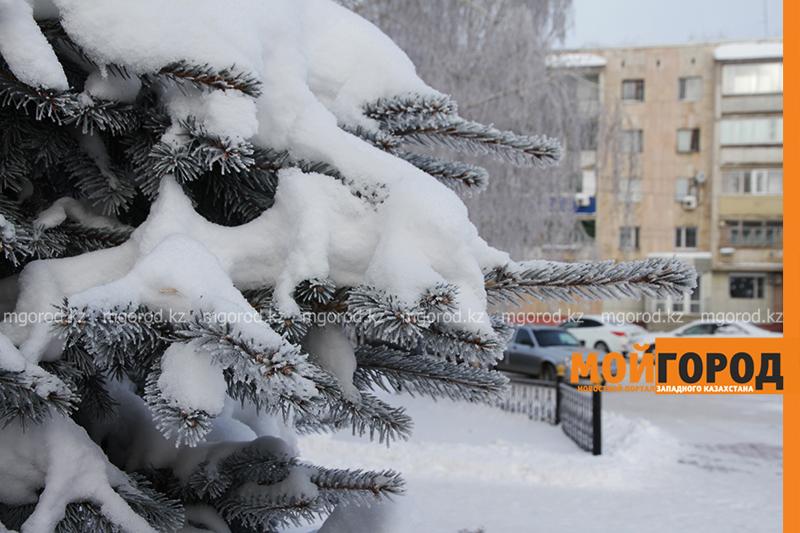 Погода на 30 декабря