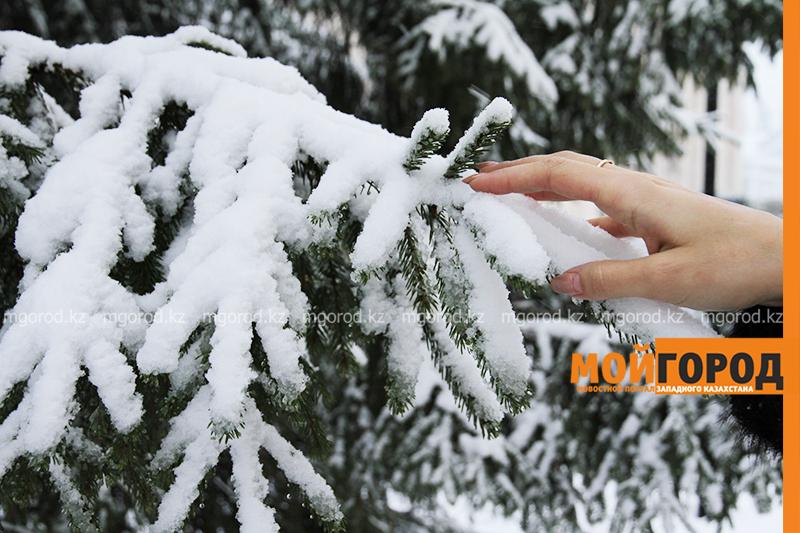 Новости Уральск - Погода на 17 января