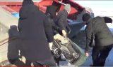 Преступную группировку браконьеров задержали в Атырауской области (видео)