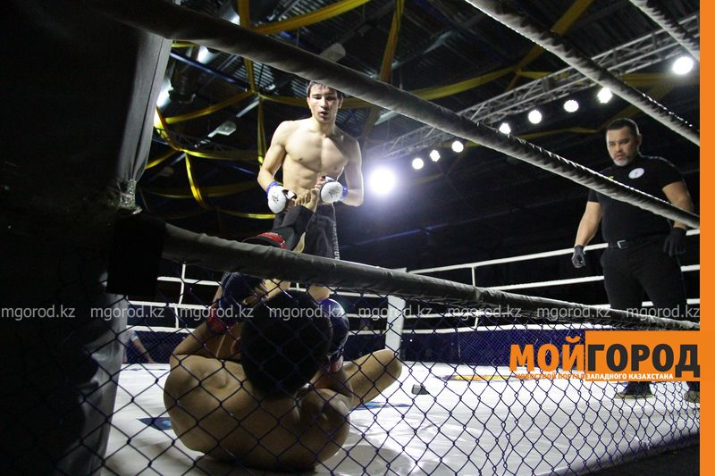 Новости - В Атырау пройдет международный чемпионат по ММА