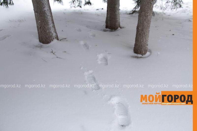 Новости Актау - Погода на 20 марта