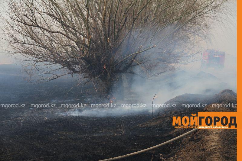 Новости Уральск - Сухостой и камыши горят в Уральске