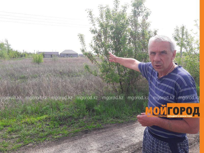 В Уральске пустующие дачные участки не признают бесхозными