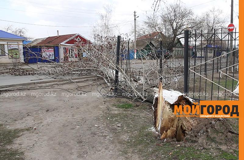 Новости Уральск - Штормовое предупреждение объявлено в ЗКО