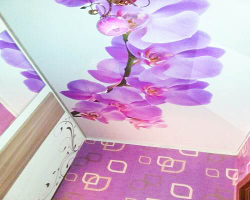 Новости Атырау - Эксклюзивные натяжные потолки и фотообои предлагает компания «Империя потолков»