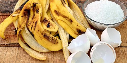 Новости PRO Ремонт - Удобрение из банановых шкурок: 15 необычных способов их применения в огороде