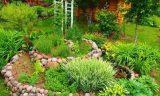 Полезнейшие советы от опытных садоводов-огородников №2