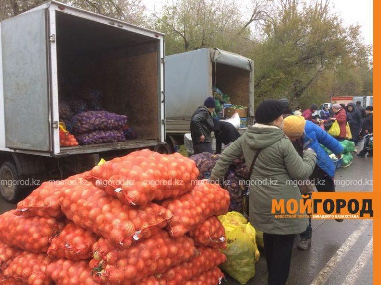 Сельскохозяйственная ярмарка прошла в Уральске