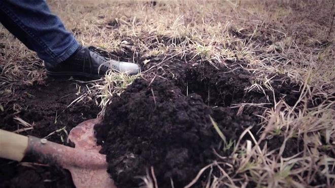 Новости Атырау - По факту жестокого убийства жителя Атырау начато досудебное расследование