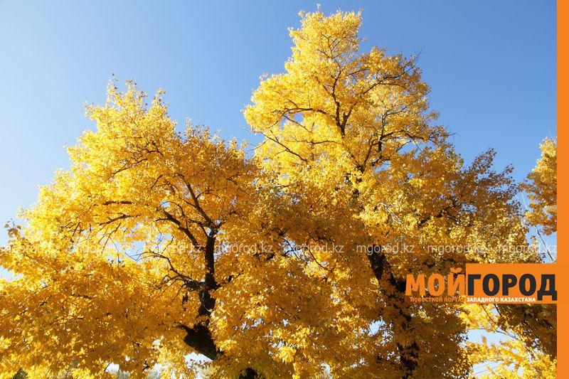 Новости - Погода на 10 октября