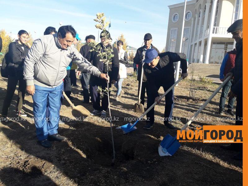 Новости Уральск - Шесть тысяч деревьев высадят в Уральске до конца года