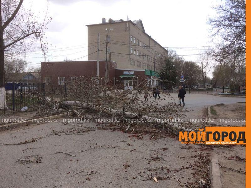 Новости Уральск - Туман и сильный ветер ожидаются в ЗКО