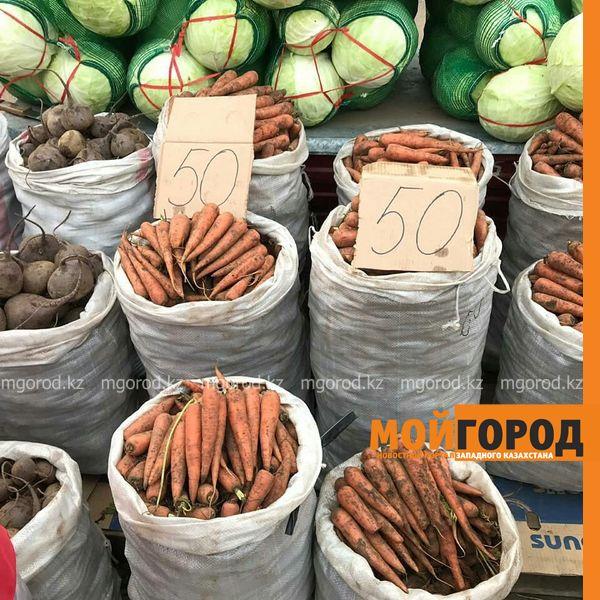 Новости Уральск - 27 тонн картофеля продали на ярмарке в Уральске