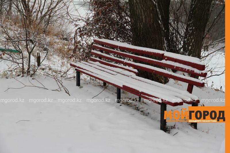 Новости - Погода на 20 декабря