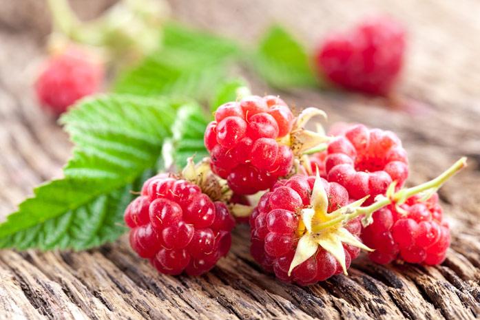 Новости Медицина - Топ самых полезных ягод. Их дают даже космонавтам