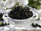 Bowl of blackcurrants