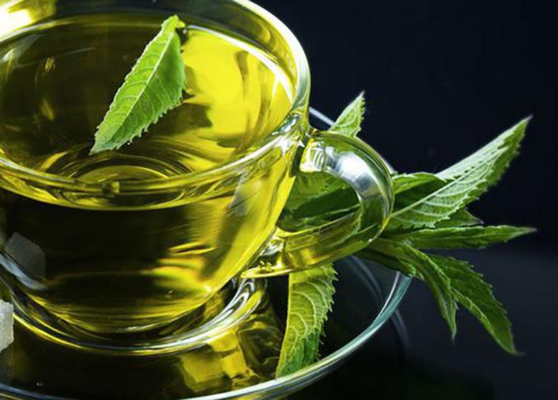 Новости Медицина - Полезные свойства зеленого чая