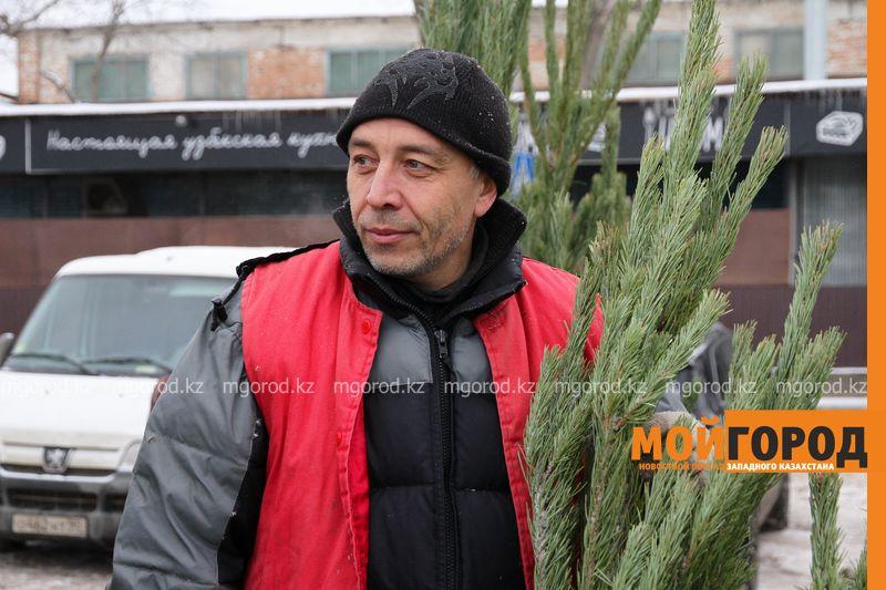 Новости Уральск - В Уральске началась продажа елок: где и почем купить?