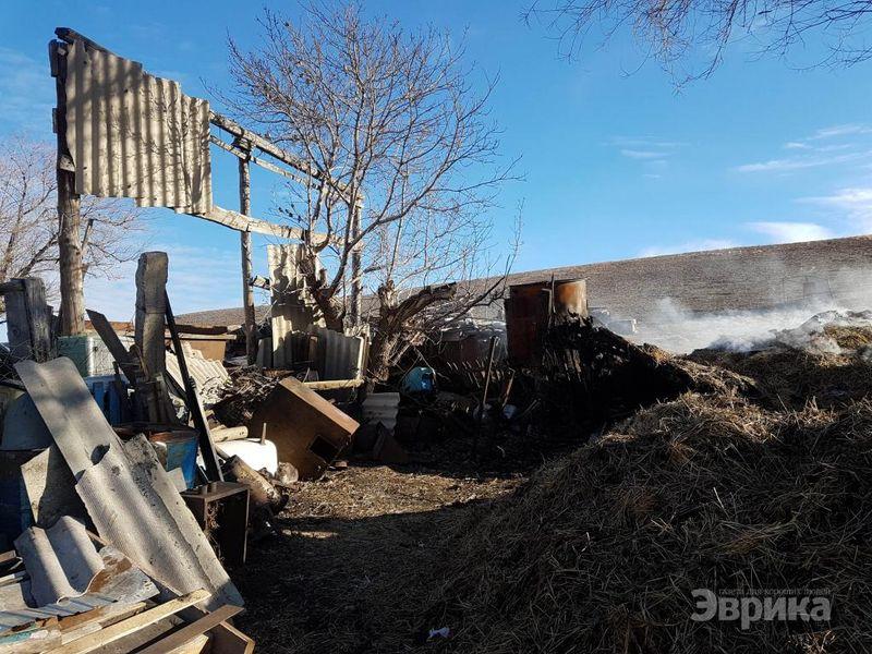 Поджигателей сена в Актюбинской области судить не будут